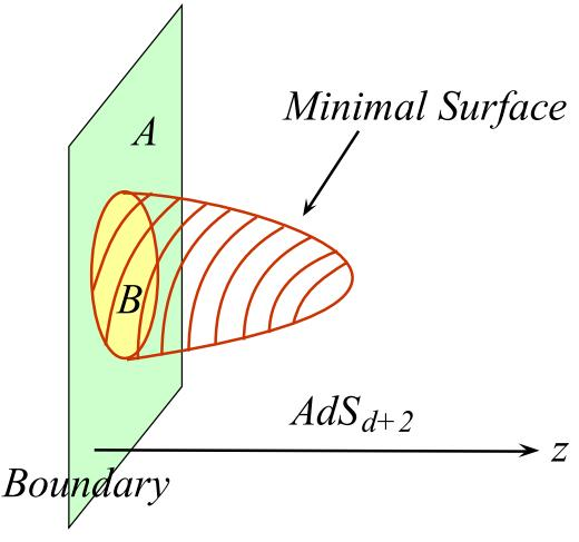 2.4 Holographic Entanglement Entropy 32 Figure 2.4: A minimal surface γ A and the region A sharing a boundary A. From [8] surface γ A B in the bulk, and also B C defines γ B C.