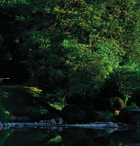 Enjoy the serenity of the Japanese Hill-and-Pond Garden, tour the fragrant Cranford Rose Garden, bring the family to explore the children s Discovery Garden, or visit the Steinhardt Conservatory,