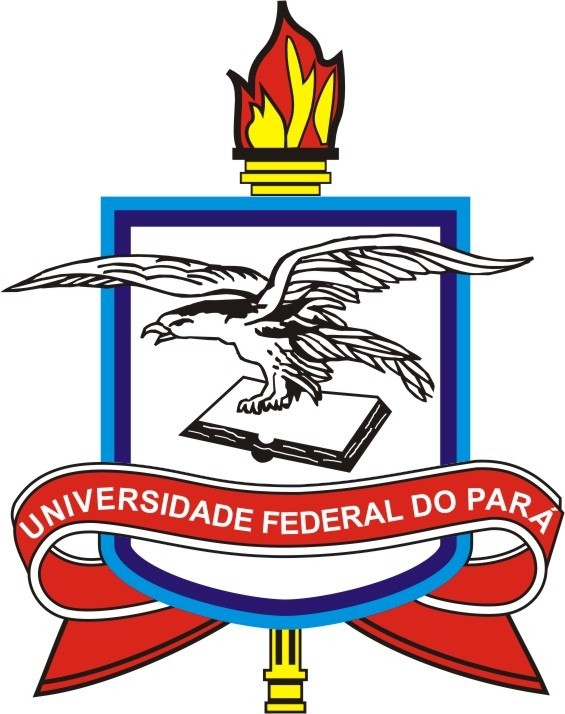 UNIVERSIDADE FEDERAL DO
