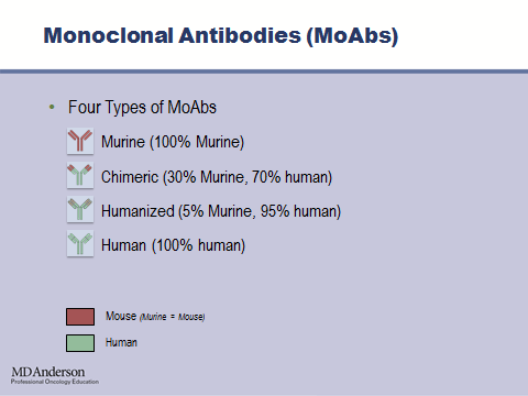 In recent years, a number of monoclonal antibodies have been developed for the treatment of patients with a variety of cancers.