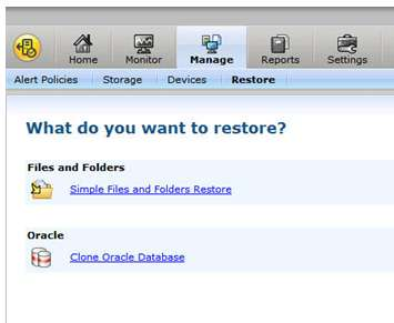 access control for security Restore cart to easily batch restore jobs OpsCenter console provides an intuitive GUI