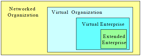 Professional Virtual Community, Collaborative Networks, Collaborative Networked Organizations, etc. (L. M. Camarinha-Matos & Afsarmanesh, 2005; Luis M Camarinha- Matos & Afsarmanesh, 2008).