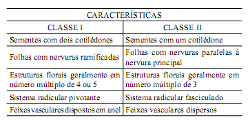 18- (UNIFESP-SP) A tabela apresenta as características gerais de duas importantes classes de Angiospermas.