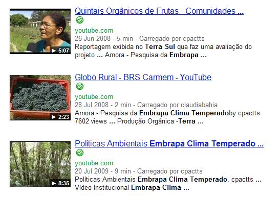 Haverá também links para o canal do Terra Sul no You Tube. Exemplo de Galeria de Vídeos.