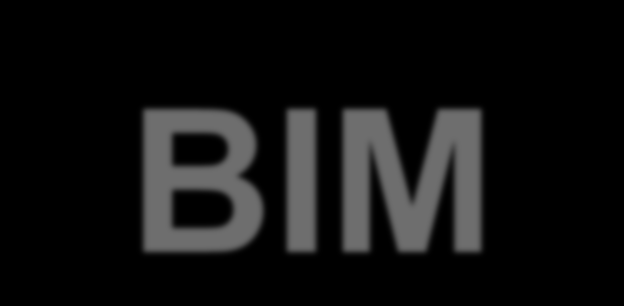 BIM Building Information Modeling no