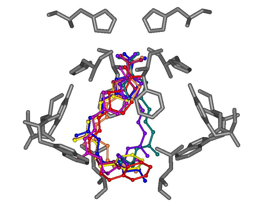 provável ligação padrões de ligação bem definidos alta % de repetição Conformational analyses and docking studies of a series of 5-nitrofuran- and 5-nitrothiophen-semicarbazone