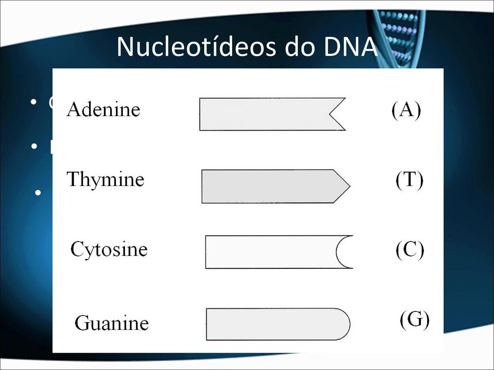 DNA: Desoxirribose.