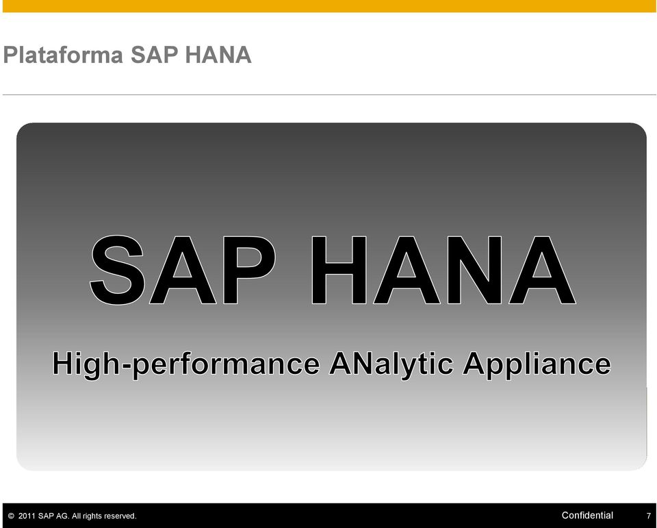 Appliance (SW + HW) 2011 SAP
