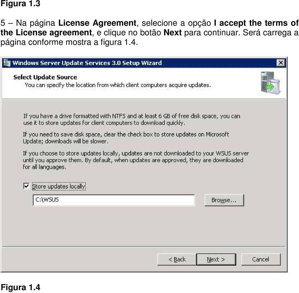 I accept the terms of the License agreement, e