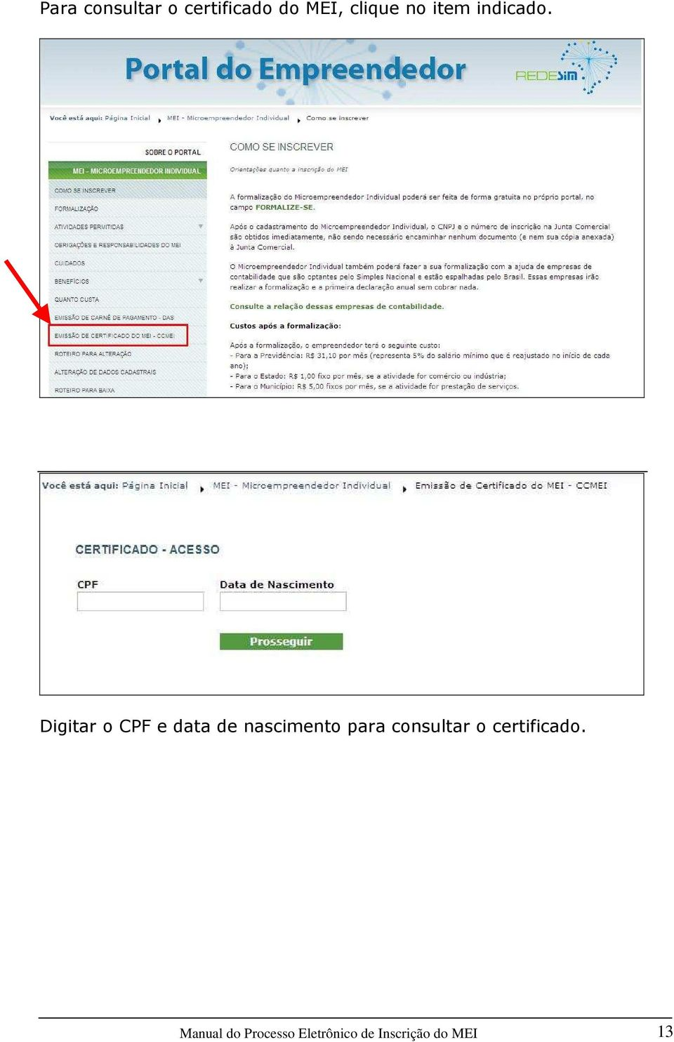 Digitar o CPF e data de nascimento para