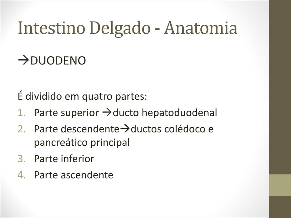Parte superior ducto hepatoduodenal 2.