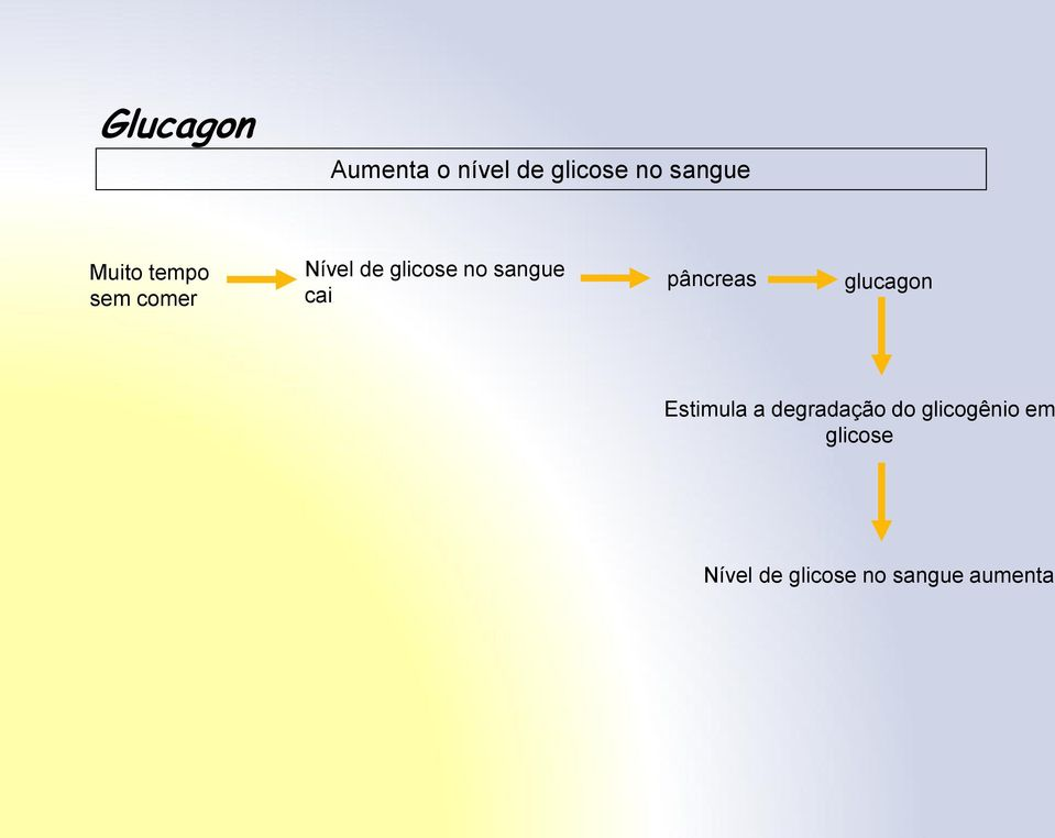cai pâncreas glucagon Estimula a degradação do