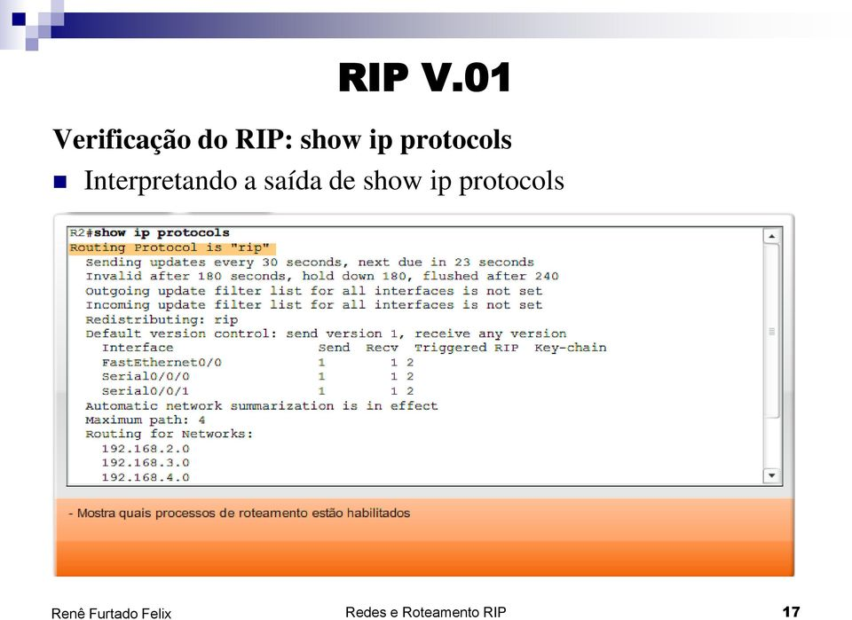 ip protocols Interpretando a