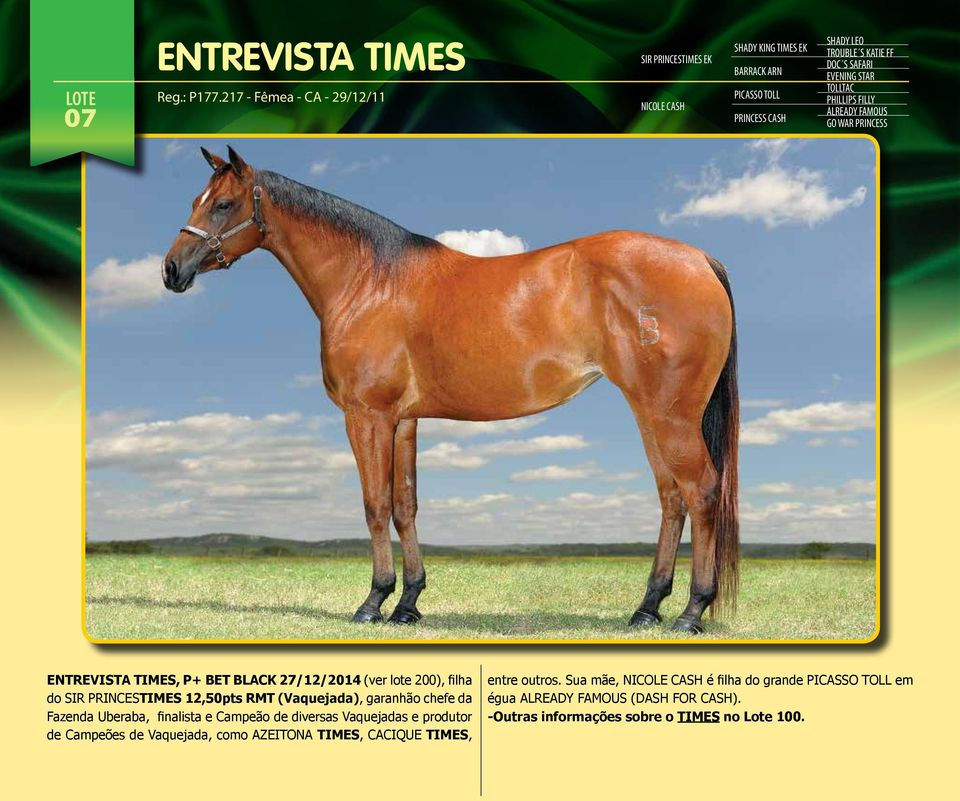 EVENING STAR TOLLTAC PHILLIPS FILLY ALREADY FAMOUS GO WAR PRINCESS ENTREVISTA TIMES, P+ BET BLACK 27/12/2014 (ver lote 200), filha do SIR PRINCESTIMES 12,50pts RMT