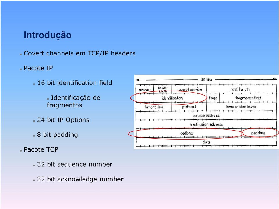 Identificação de fragmentos 24 bit IP Options 8