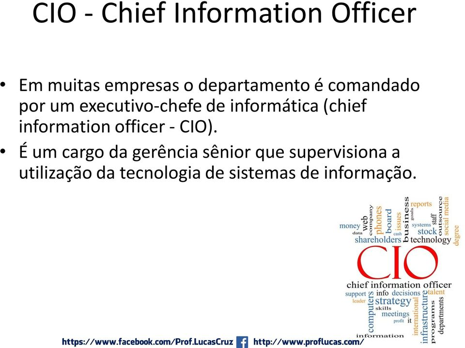 (chief information officer - CIO).
