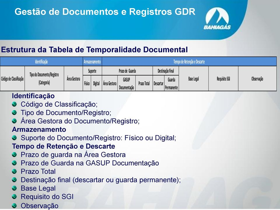Tipo de Documento/Registro; Área Gestora do Documento/Registro; Armazenamento Suporte do Documento/Registro: Físico ou Digital; Tempo de Retenção e Descarte Prazo de guarda na