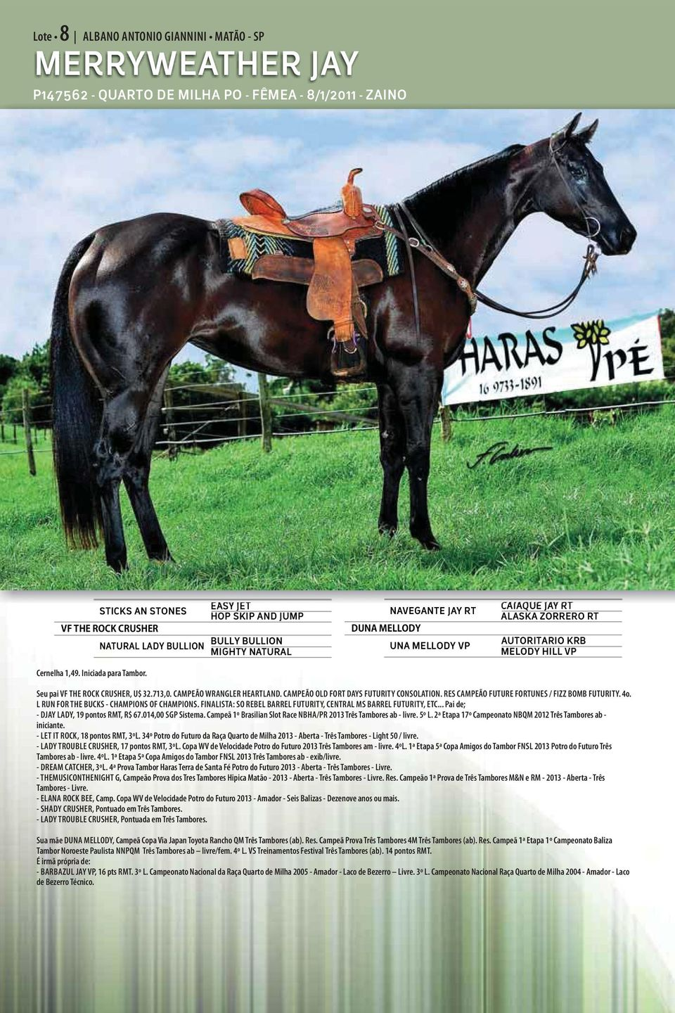 THE ROCK CRUSHER, U$ 32.713,0. CAMPEÃO WRANGLER HEARTLAND. CAMPEÃO OLD FORT DAYS FUTURITY CONSOLATION. RES CAMPEÃO FUTURE FORTUNES / FIZZ BOMB FUTURITY. 4o.
