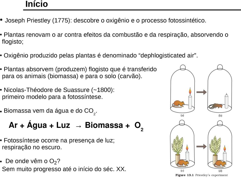 dephlogisticated air. Plantas absorvem (produzem) flogisto que é transferido para os animais (biomassa) e para o solo (carvão).