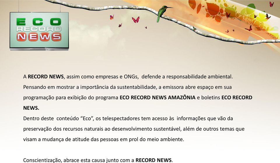 AMAZÔNIA e boletins ECO RECORD NEWS.