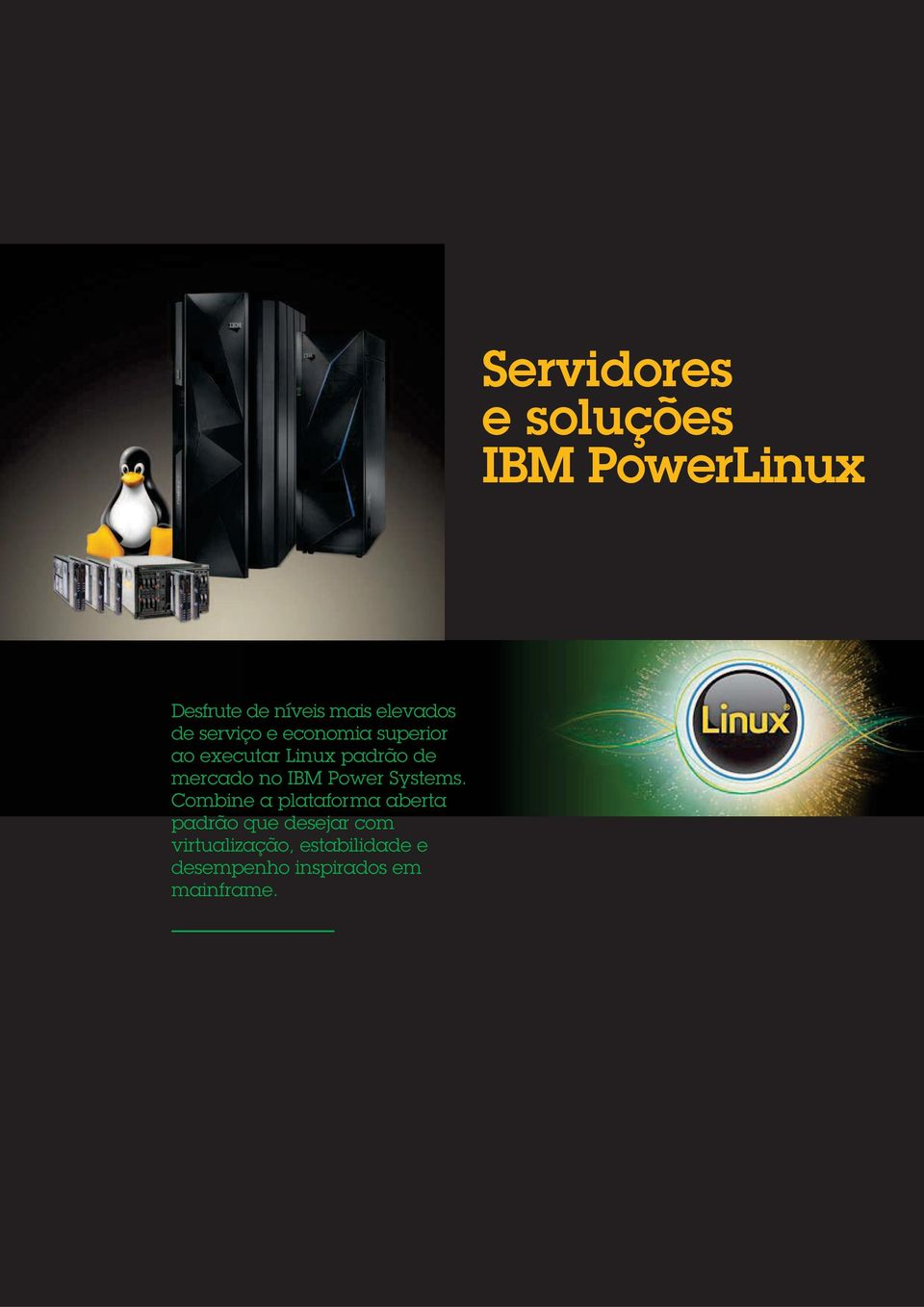no IBM Power Systems.