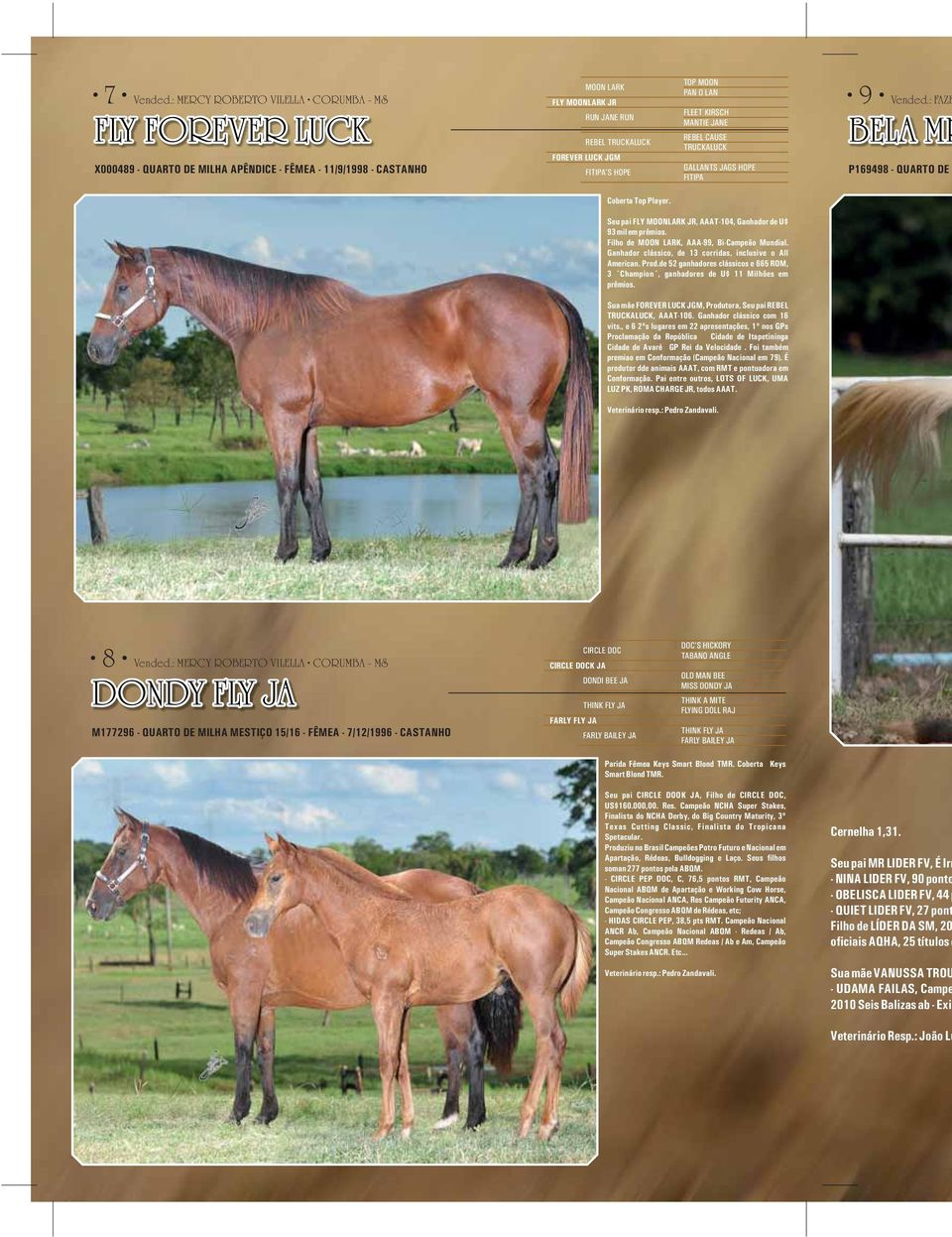 FITIPA'S HOPE TOP MOON PAN O LAN FLEET KIRSCH MANTIE JANE REBEL CAUSE TRUCKALUCK GALLANTS JAGS HOPE FITIPA 9 Vended.: FAZE BELA MR P169498 - QUARTO DE Coberta Top Player.
