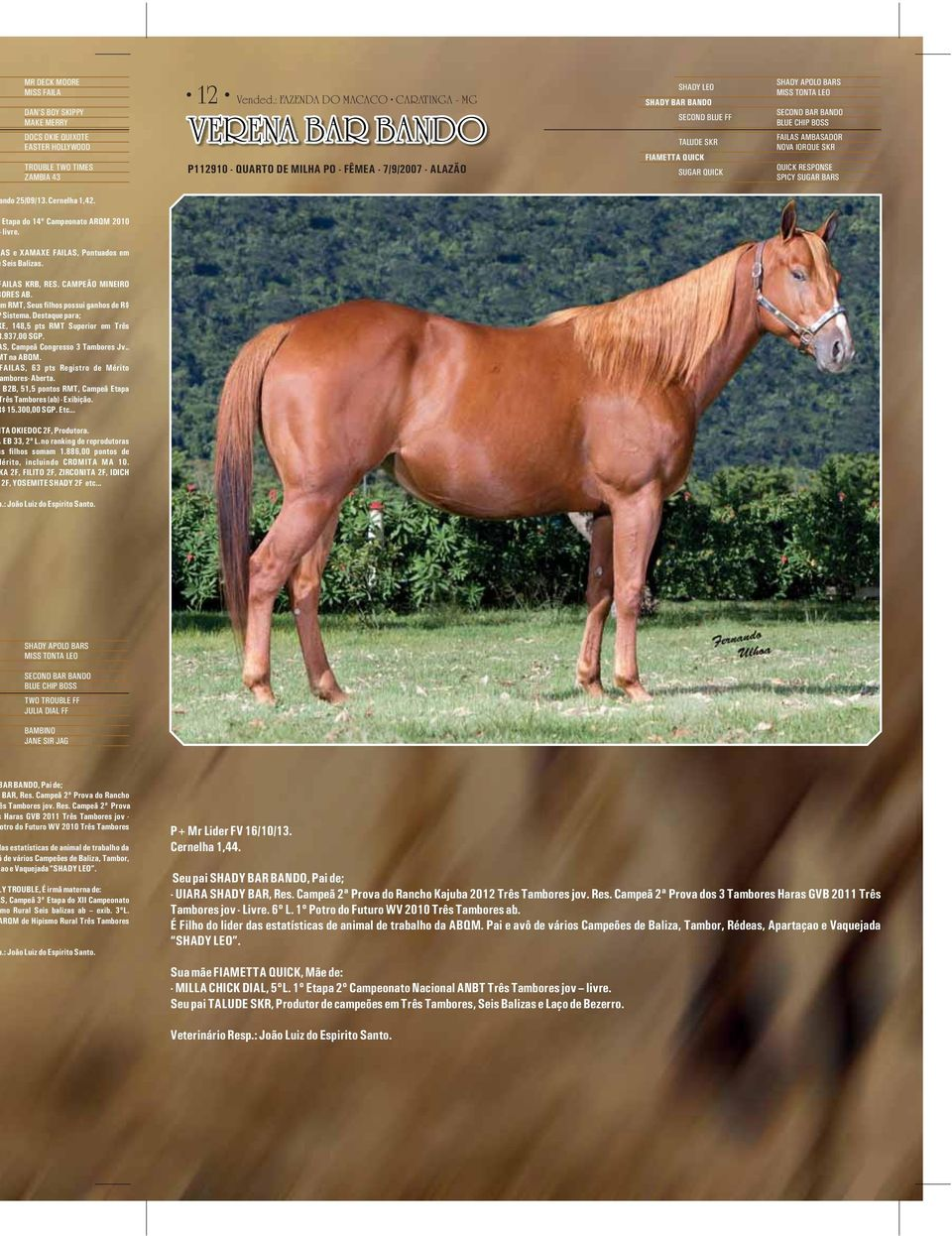 BARS MISS TONTA LEO SECOND BAR BANDO BLUE CHIP BOSS FAILAS AMBASADOR NOVA IORQUE SKR QUICK RESPONSE SPICY SUGAR BARS ndo 25/09/13. Cernelha 1,42. Etapa do 14º Campeonato ARQM 2010 livre.