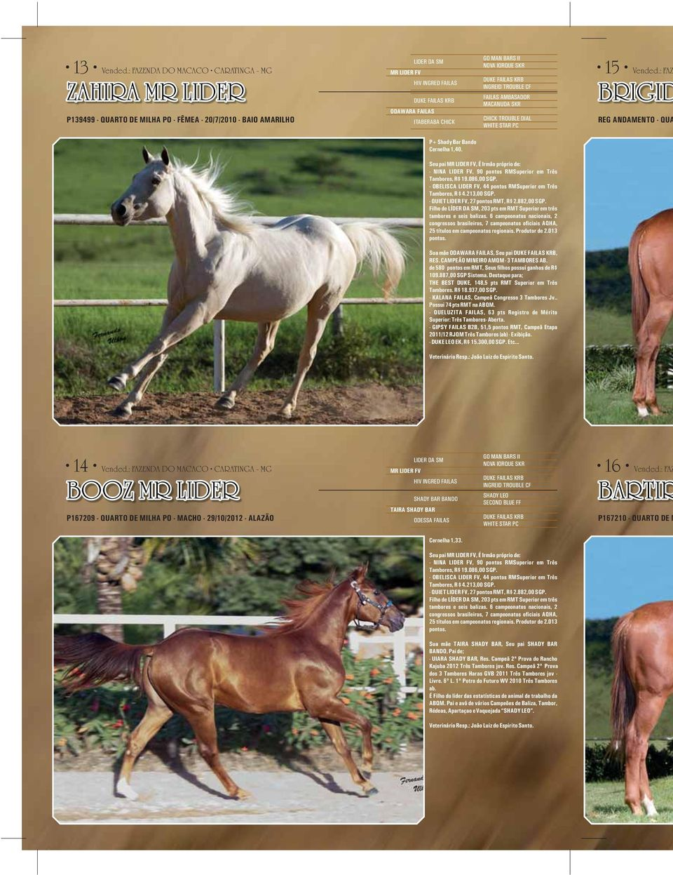 CHICK GO MAN BARS II NOVA IORQUE SKR DUKE FAILAS KRB INGREID TROUBLE CF FAILAS AMBASADOR MACANUDA SKR CHICK TROUBLE DIAL WHITE STAR PC 15 Vended.