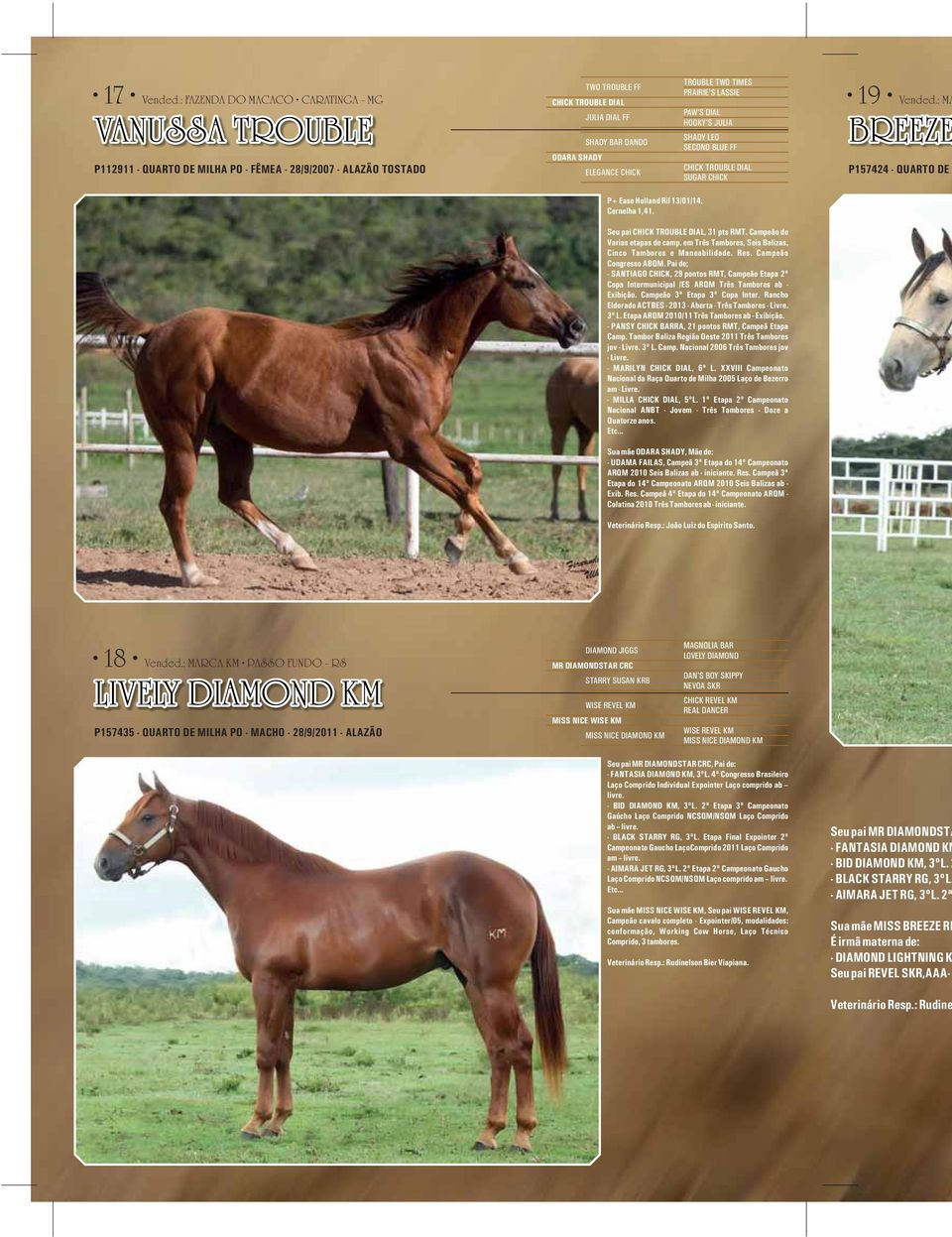 ELEGANCE CHICK TROUBLE TWO TIMES PRAIRIE'S LASSIE PAW'S DIAL HOOKY'S JULIA SHADY LEO SECOND BLUE FF CHICK TROUBLE DIAL SUGAR CHICK 19 Vended.