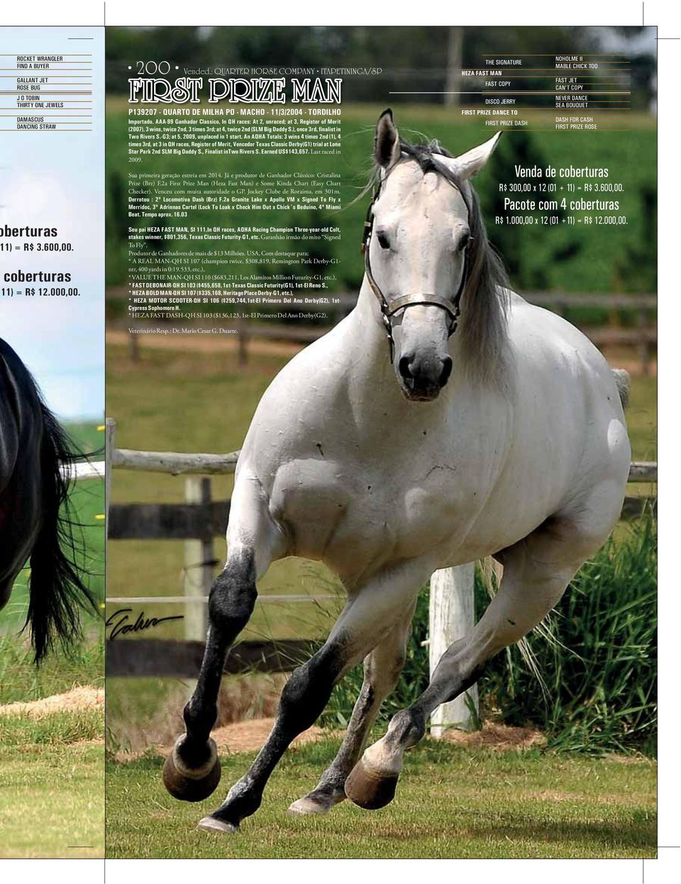 AAA-99 Ganhador Classico, In QH races: At 2, unraced; at 3, Register of Merit (2007), 3 wins, twice 2nd, 3 times 3rd; at 4, twice 2nd (SLM Big Daddy S.), once 3rd, finalist in Two Rivers S.