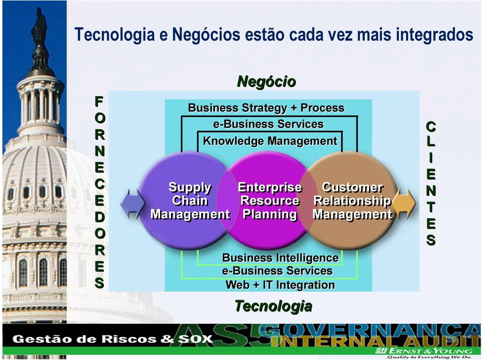 Management Negócio Enterprise Resource Planning Business Intelligence e-business