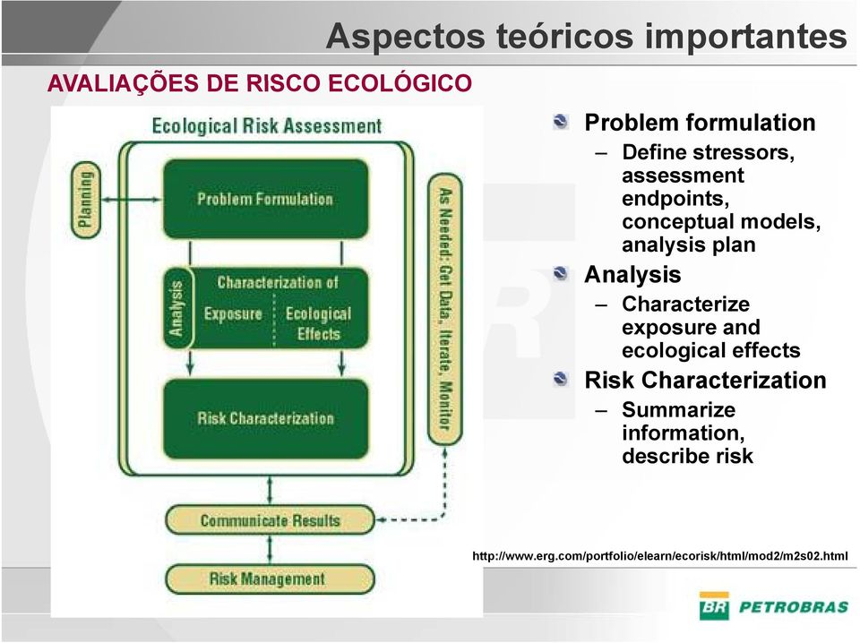 Characterize exposure and ecological effects Risk Characterization Summarize