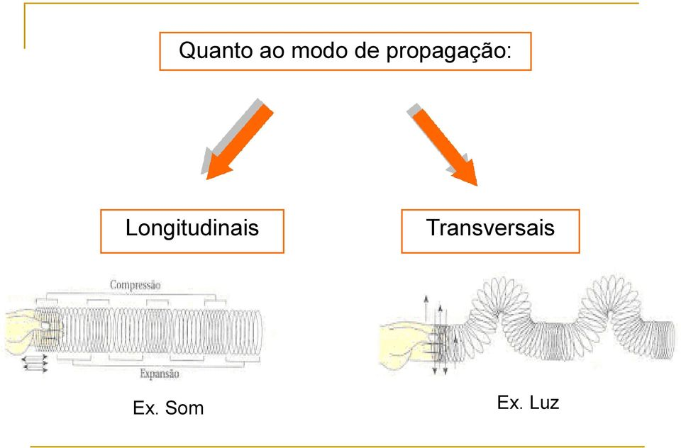 Longitudinais