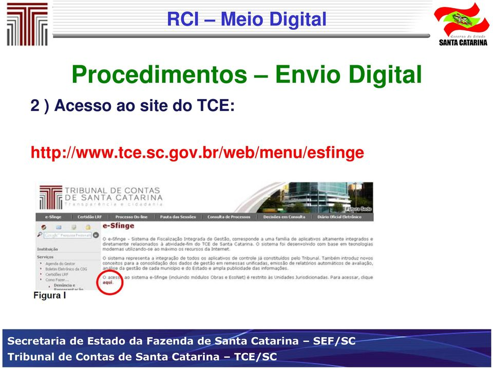 site do TCE: http://www.