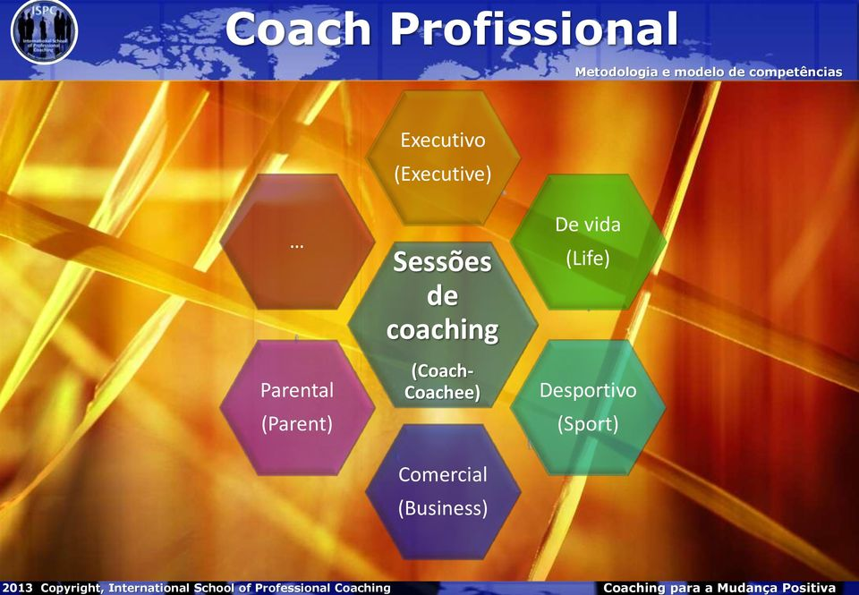 Executivo (Executive) Parental (Parent) Sessões de coaching