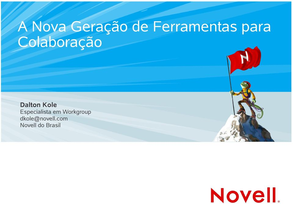 Especialista em Workgroup