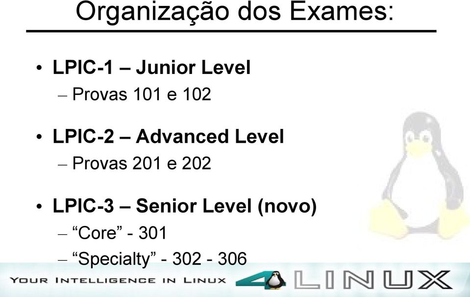 Level Provas 201 e 202 LPIC-3 Senior