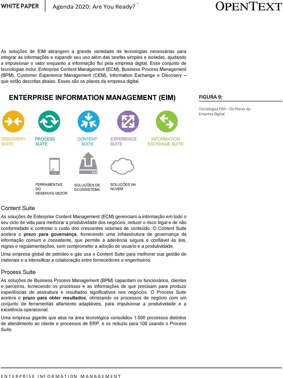 Esse conjunto de tecnologias inclui: Enterprise Content Management (ECM), Business Process Management (BPM), Customer Experience Management (CEM), Information Exchange e Discovery que estão descritas