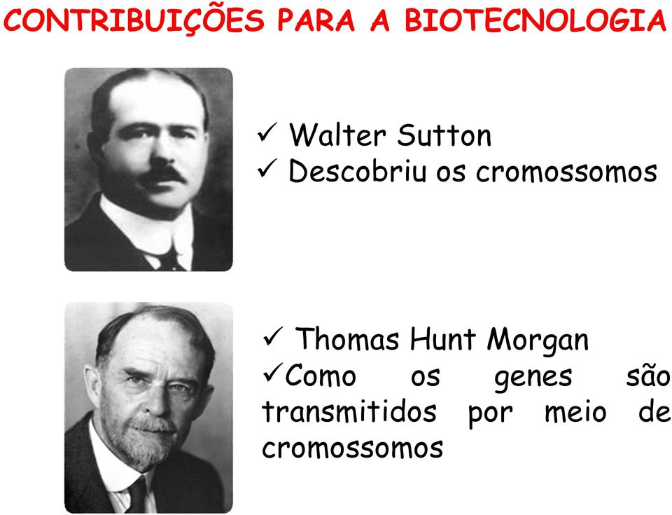 cromossomos ü Thomas Hunt Morgan ücomo