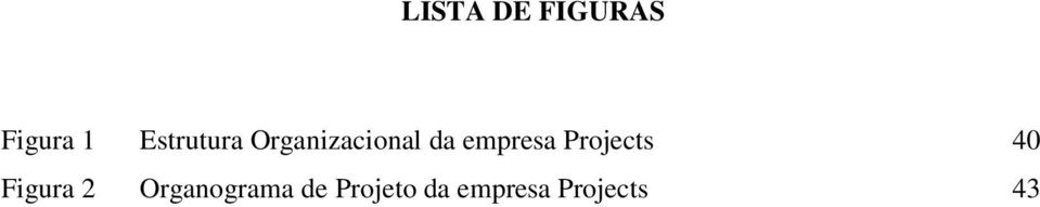 empresa Projects 40 Figura 2