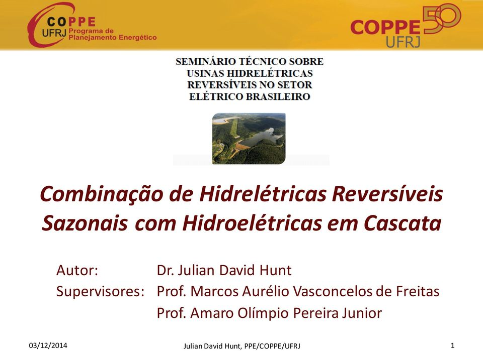 Julian David Hunt Supervisores: Prof.