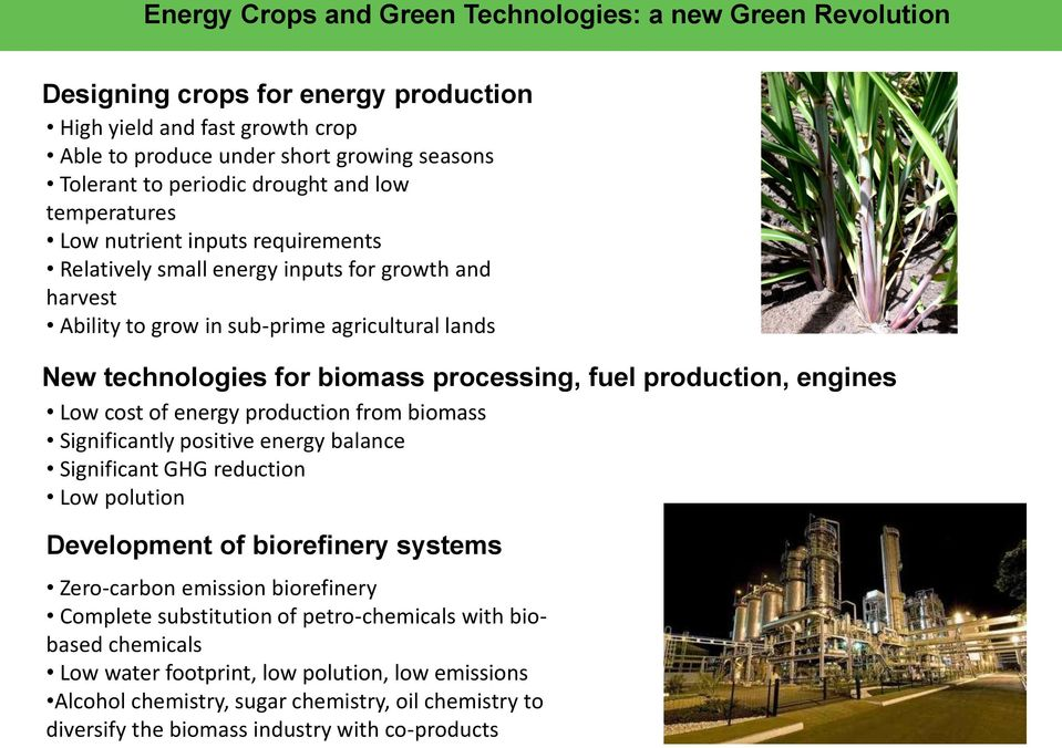 processing, fuel production, engines Low cost of energy production from biomass Significantly positive energy balance Significant GHG reduction Low polution Development of biorefinery systems