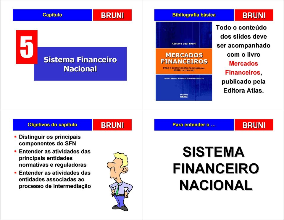 Objetivos do capítulo Distinguir os principais componentes do SFN Entender as atividades das principais