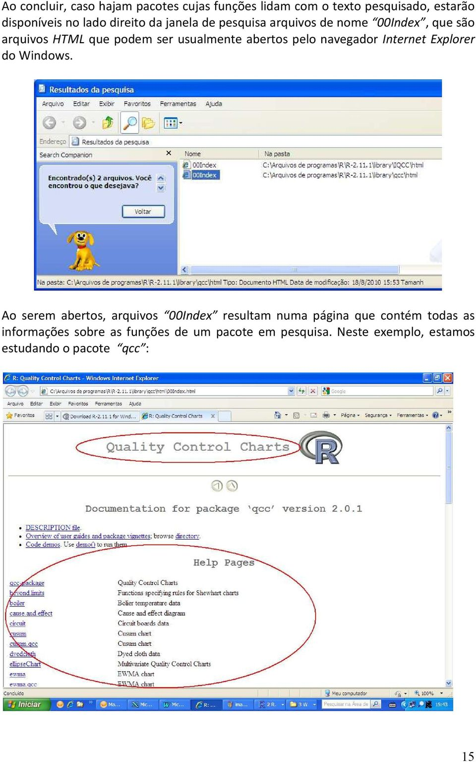 pelo navegador Internet Explorer do Windows.