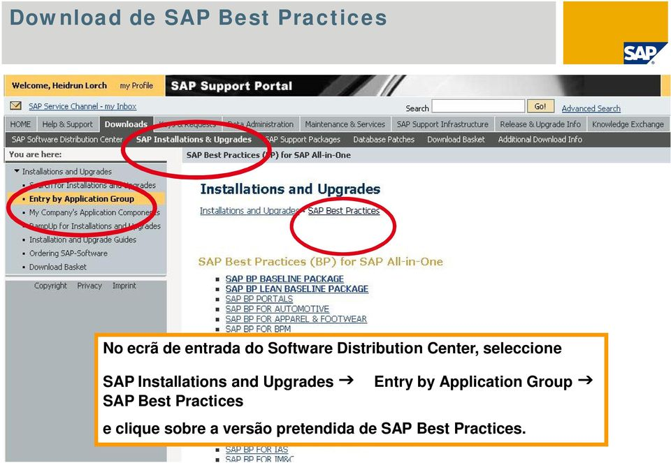 Entry by Application Group SAP Best Practices e