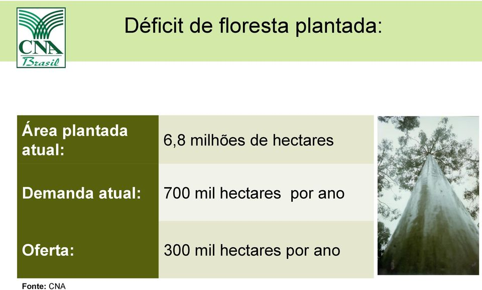 milhões de hectares 700 mil hectares