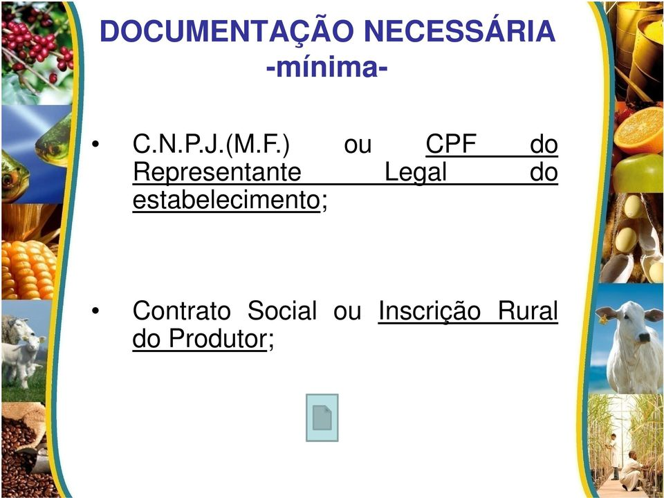 ) ou CPF do Representante Legal do
