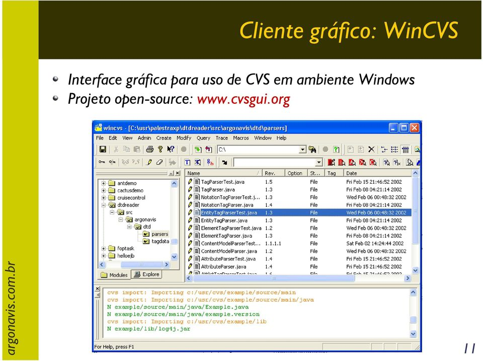 de CVS em ambiente Windows