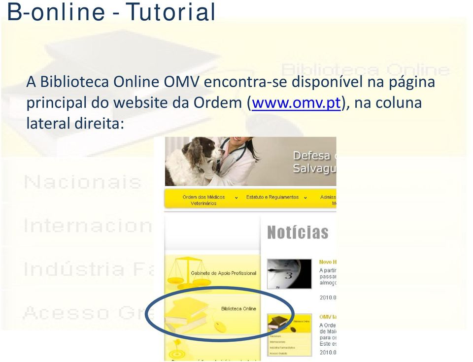 página principal do website da