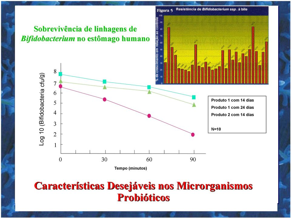conservation Produto 1 com 24 dias Bio after 24 24 days conservation Produto 2 com 14 dias Product n 2 after 14 14